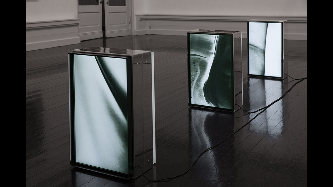 Katja Bjørn. Silvered lines of Enlightenment 2020